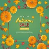 Autumn Sale Background Remise, vente en automne Insecte de bannière dans un cadre rectangulaire avec le potiron, feuilles sur une illustration libre de droits