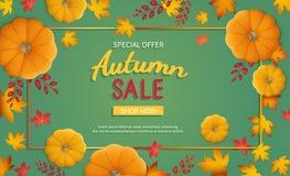 Autumn Sale Background Remise, vente en automne Insecte horizontal de bannière dans un cadre rectangulaire avec le potiron, feuil illustration libre de droits
