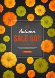 Autumn Sale Background Remise, vente en automne Insecte vertical de bannière avec les potirons jaunes, verts, oranges sur le fond illustration stock