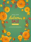 Autumn Sale Background Remise, vente en automne Insecte vertical de bannière dans un cadre rectangulaire avec le potiron, feuille illustration de vecteur