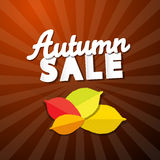 Autumn Sale Background Royalty Free Stock Photos