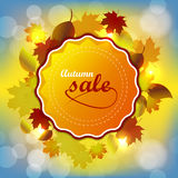 Autumn sale background Stock Image