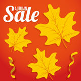 Autumn sale background. Royalty Free Stock Photography