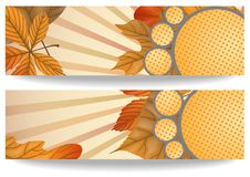 Autumn Sale Background Royalty Free Stock Images