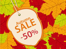 Autumn sale background14 Stock Photos