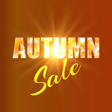 Autumn sale background with yellow maple leaves Royalty Free Stock Photos
