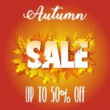 Autumn Sale. Banner for sale Royalty Free Stock Images
