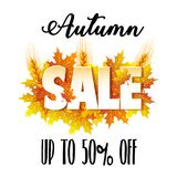 Autumn Sale. Banner for sale Stock Image