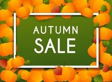Autumn Sale Banner avec des potirons et des feuilles, affiche, insecte Vecto illustration de vecteur