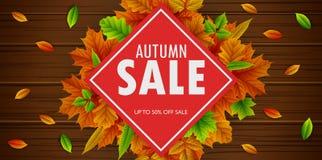 Autumn Sale Banner avec les feuilles en baisse Photographie stock