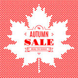 Autumn sale banner Background Maple Leaf Fall Festival Stock Photo