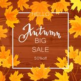 Autumn sale banner, beautiful yellow falling leaves Royalty Free Stock Photos