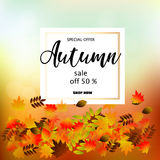 Autumn sale banner with colorful fall leaves. Royalty Free Stock Photography