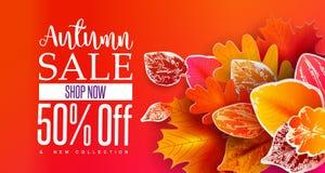 Autumn Sale Banner con las hojas de papel Foto de archivo