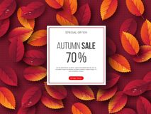 Autumn sale banner with 3d leaves and dotted pattern. Red background - template for seasonal discounts, vector. Autumn sale banner with 3d leaves and dotted vector illustration