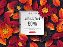 Autumn sale banner with 3d leaves, flowers and water drops. Violet background - template for seasonal discounts, vector. Autumn sale banner with 3d leaves vector illustration