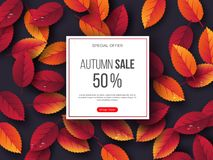 Autumn sale banner with 3d leaves and water drops. Violet background - template for seasonal discounts, vector. Autumn sale banner with 3d leaves and water drops stock illustration