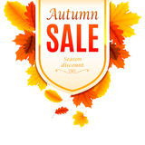 Autumn Sale Banner. Decorated with color leaves Stock Images