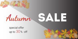 Autumn sale banner and discount. On black and white background inscription autumn sale at the top and bottom of autumn leaves stock illustration