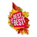Autumn sale banner. Discount template Stock Photos