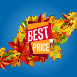 Autumn sale banner. Discount template Stock Image