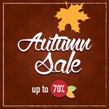 Autumn sale banner. Falling leafs on brown background Stock Photos