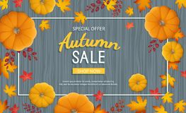 Autumn sale banner. Horizontal  background with pumpkin, leaves at rectangular frame on a wooden table. Royalty Free Stock Photography