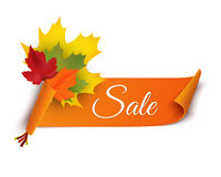 Autumn sale banner  illustration. Colorful leaves with paper scroll banner Royalty Free Stock Images