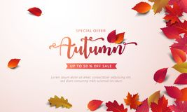 Autumn sale banner layout template decorate with maple and realistic leaves in warm color tone. For shopping sale or promotion poster, leaflet and web banner royalty free illustration