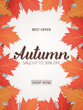 Autumn sale. Banner with maple leaves frame and trendy Autumn brush lettering.  stock illustration