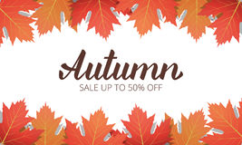 Autumn sale. Banner with maple leaves frame and trendy Autumn brush lettering. Seasonal Fall sale card vector illustration