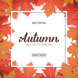Autumn sale. Banner with maple leaves frame and trendy Autumn brush lettering. Seasonal Fall sale card stock illustration