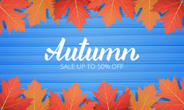 Autumn. Sale banner with maple leaves frame and trendy Autumn brush lettering. Seasonal Fall sale card.  Royalty Free Stock Images