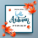 Autumn Sale banner with maples. Royalty Free Stock Photos