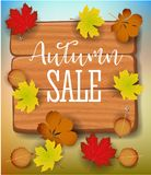 Autumn sale banner, paper colorful tree leaf maple, rowan leaves on wood texture background. Autumnal design for fall Stock Images