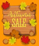Autumn sale banner, paper colorful tree leaf maple, rowan leaves on wood texture background. Autumnal design for fall Royalty Free Stock Photography