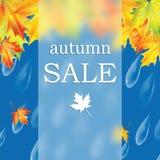 Autumn sale Royalty Free Stock Photos