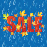Autumn sale. Autumn banner with raindrops and leaves of maple.Autumn sale Stock Image