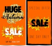 Autumn Sale. Banner for sale Royalty Free Stock Photography