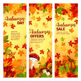 Autumn sale banner set of fall leaf and pumpkin Stock Images