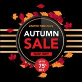 Autumn sale banner template with leaves, fall leaves for shopping sale. banner design. Poster, card, label, web banner. Vector ill. Ustration template design stock illustration