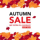 Autumn sale banner template with leaves, fall leaves for shopping sale. banner design. Poster, card, label, web banner. Vector ill. Ustration template design royalty free illustration