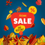 Autumn sale banner. This week only. Royalty Free Stock Photography