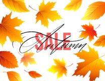 Autumn Sale-bannerachtergrond met dalingsbladeren Vector illustratie Stock Afbeeldingen