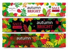 Autumn sale banners. Vector illustration Stock Photos
