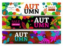 Autumn sale banners. Vector illustration Royalty Free Stock Photography