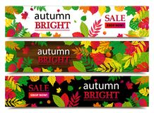 Autumn sale banners. Vector illustration Stock Photography