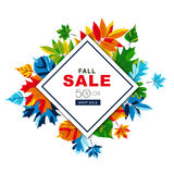 Autumn sale banners with isolated frame and multicolor autumn leaves. Vector fall poster background. Stock Photos