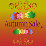 Autumn sale banners. With multicolor maple autumn leaves. Vector fall poster background. Layout for discount labels, flyers and shopping Royalty Free Stock Photography
