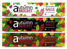 Autumn sale banners. Vector illustration Royalty Free Stock Images